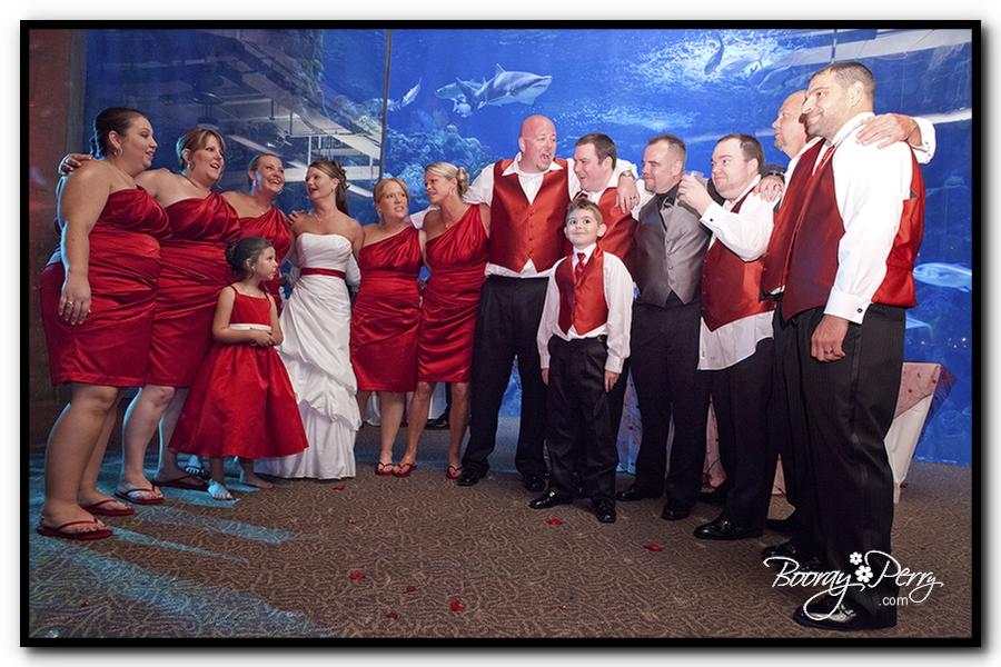 Florida Aquarium wedding 21