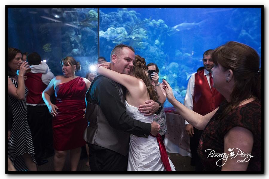 Florida Aquarium wedding 28