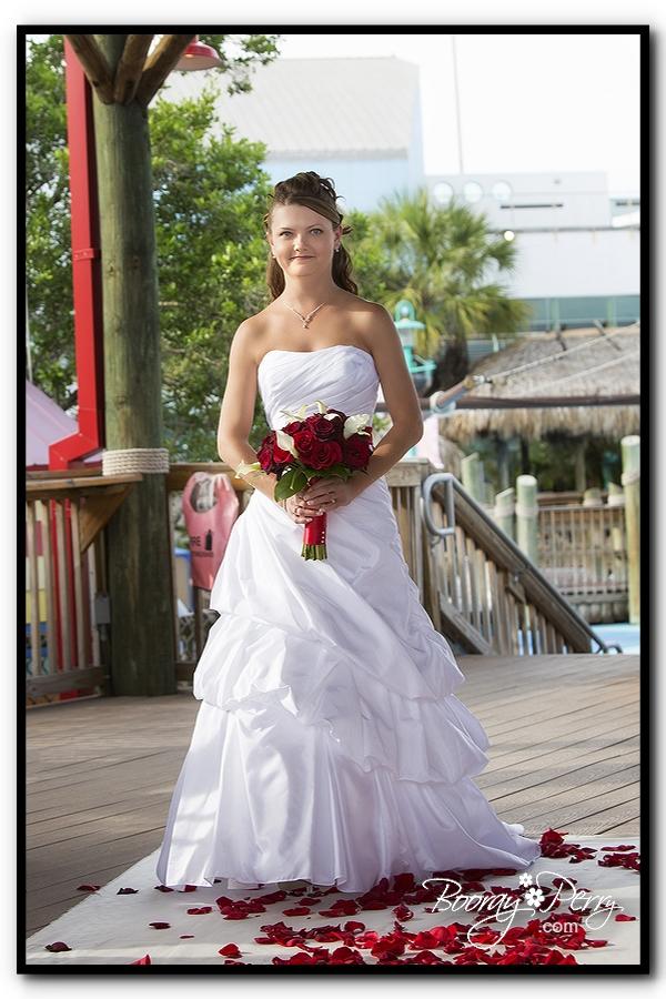Florida Aquarium wedding 8