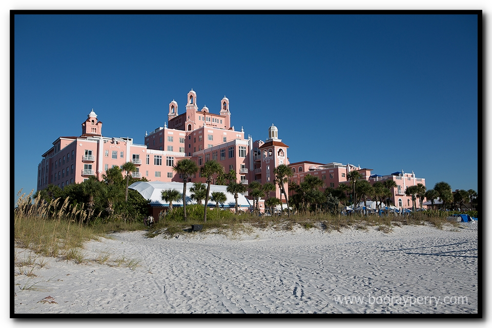 Don Cesar Wedding - 006